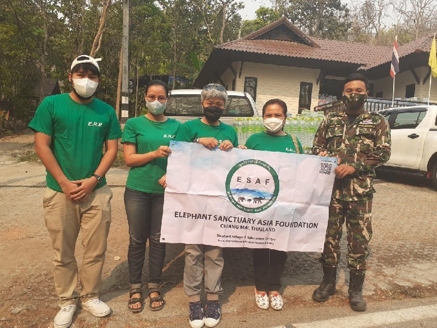 ESAF support staff to stop forest fires