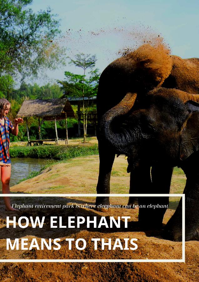 ทำไมช้างถึงสำคัญ l The reason why elephants are still important