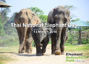 Thai National Elephant Day