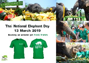 13th March, Thai National Elephant Day+ Free T-Shirt
