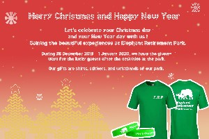 Christmas and New year Promotion