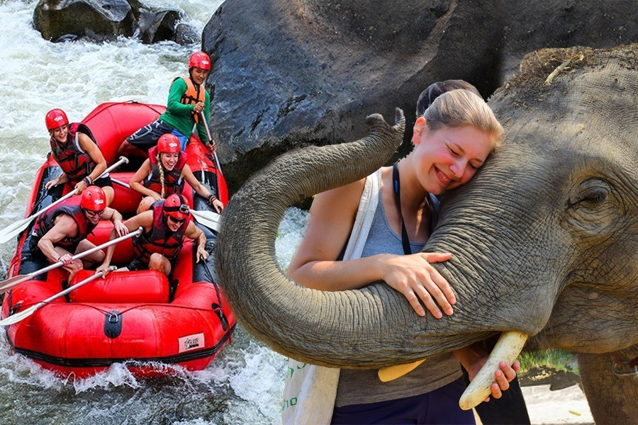 ELEPHANT CARE (HALF DAY) + ATV BUSHWACKER program + White Water Rafting No Promotion for this program