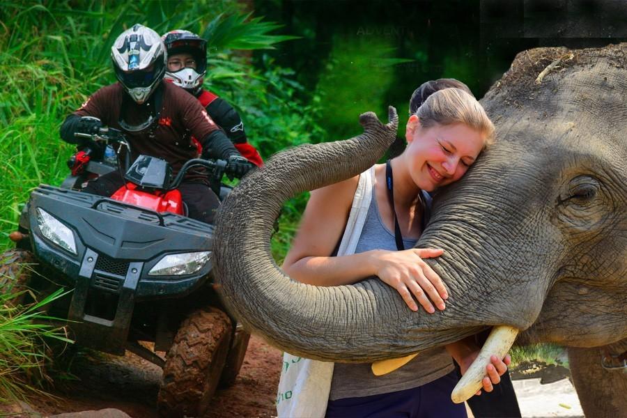 ELEPHANT CARE (HALF DAY) + ATV BUSHWACKER program (HALF DAY)