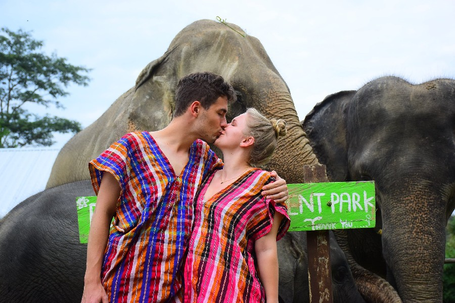 ROMANTIC ELEPHANT CARE PROGRAM (MINIMUM 2 PEOPLE)